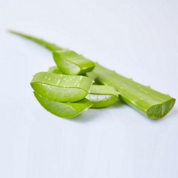 Φρέσκια Aloe σε φύλλα aloeVee AAA